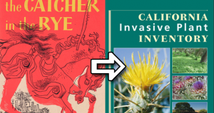 Catcher in the Rye dropped in favour of 'informational texts'