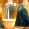 'Lord of the Rings' Parody — From Sesame Street!