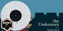 Bookshots: 'The Understory' by Pamela Erens