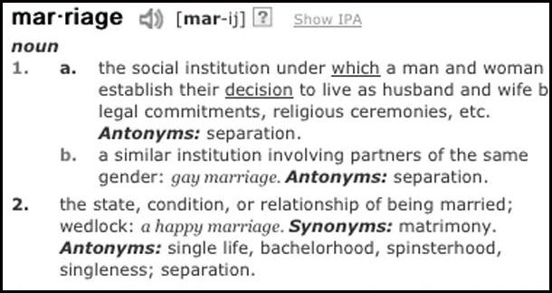Marriage-Equality Activists Aim At The Dictionary