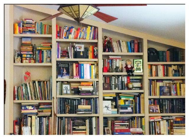 Show Us Your Shelves entry: @dance_reader