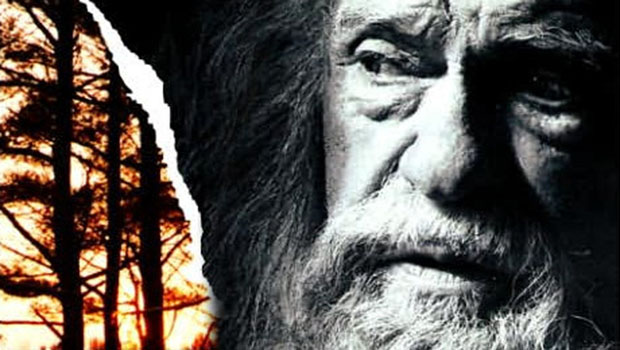The Giver Book and Movie Comparison Essay