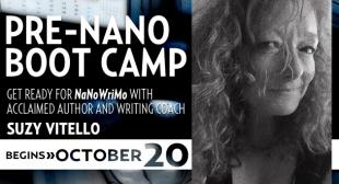 Pre-Nano Bootcamp with Suzy Vitello