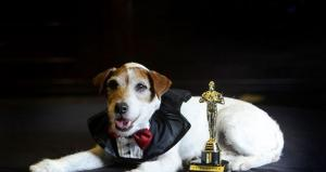 Dog from 'The Artist' Signs Book Deal