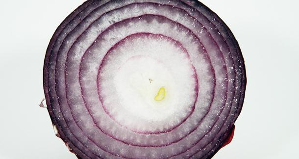 Image result for Layers of an onion