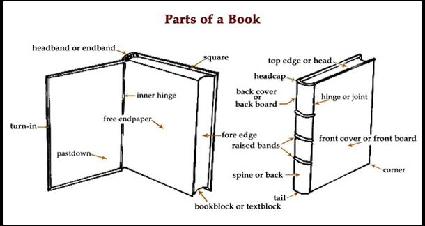 library love  anatomy of the book