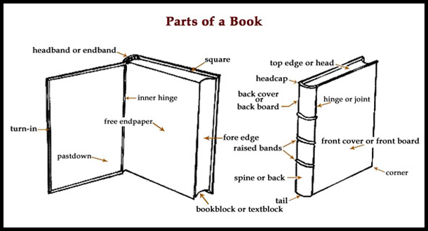 2016 rare books week anz litlovers litblog she showed us the component parts of a book too swarovskicordoba Image collections